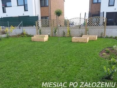 ogród przydomowy w zalesewie 2