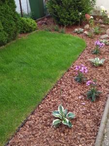 mały ogród przydomowy w swarzędzu 3