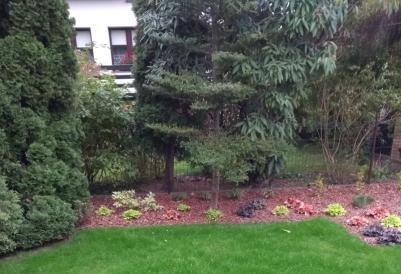 mały ogród przydomowy w swarzędzu 5